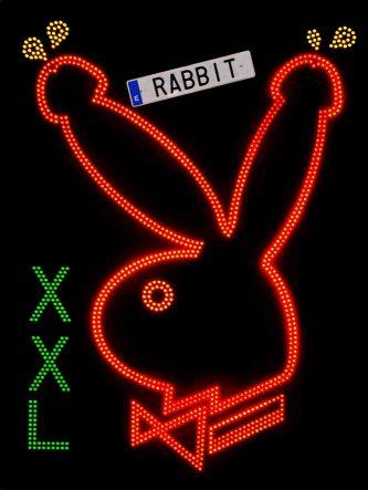 Rabbit XXL*