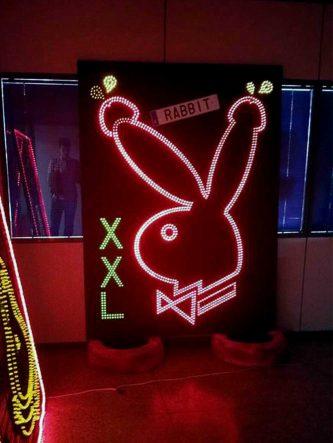 Rabbit XXL estudio*